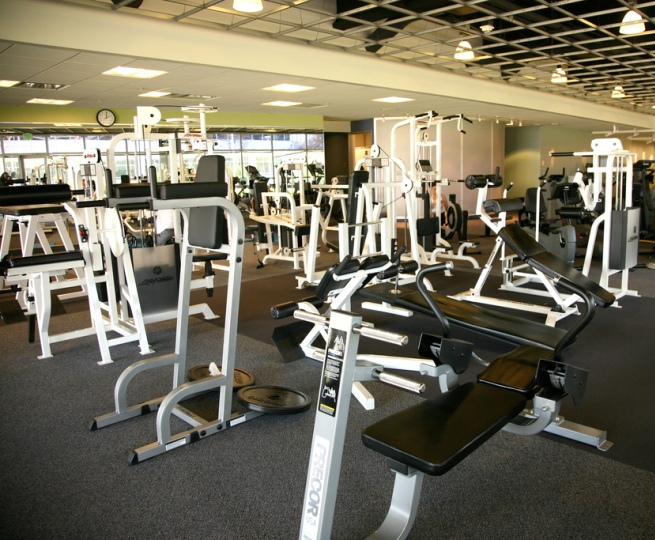 Timeless Fitness Center Gambia