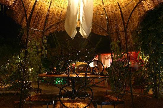 The Green Mamba Garden